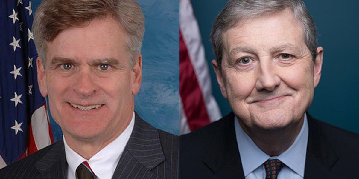 Louisiana senators remain silent as House votes to impeach President