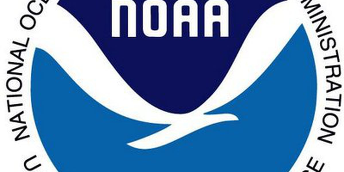 NOAA to announce outlook for 2019 hurricane season