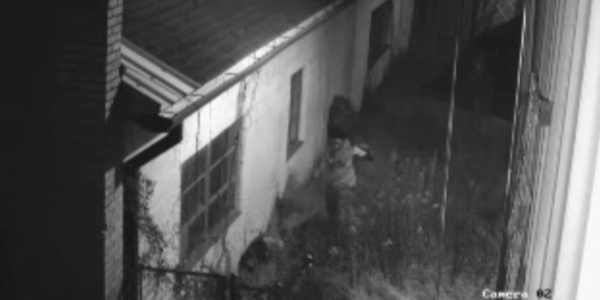 Police search for people accused of burglarizing repair shop