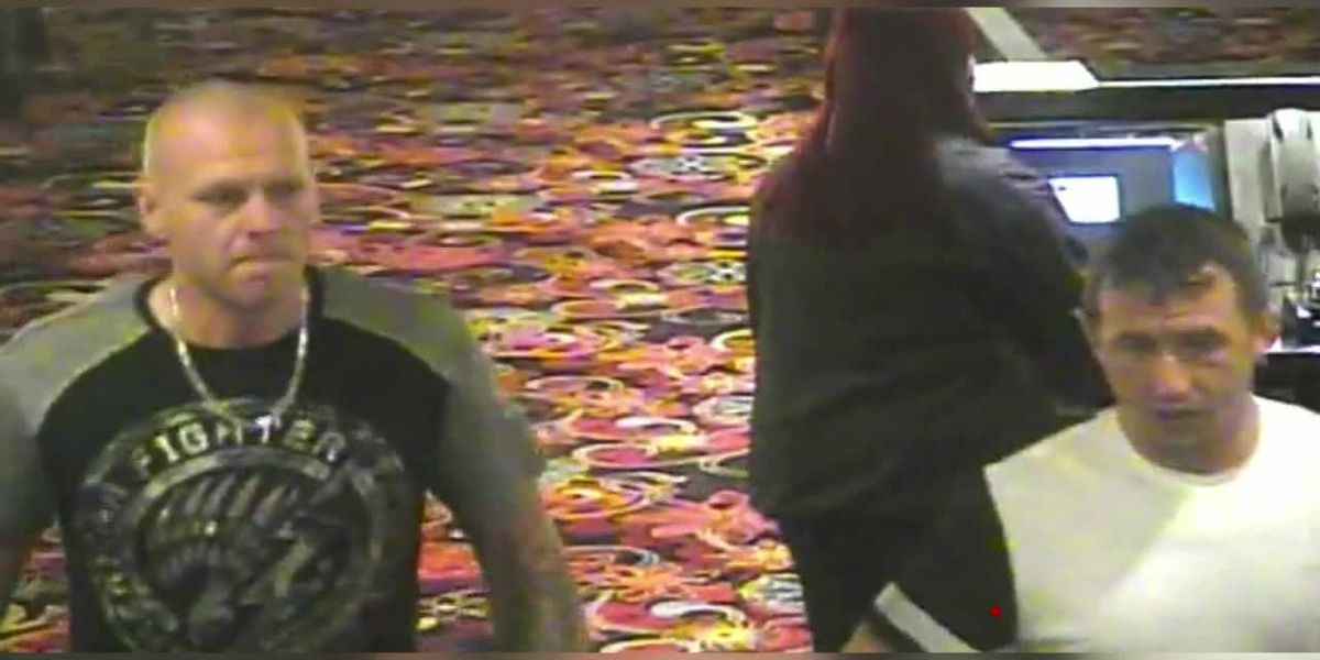 Shreveport police need your help identifying theft suspects