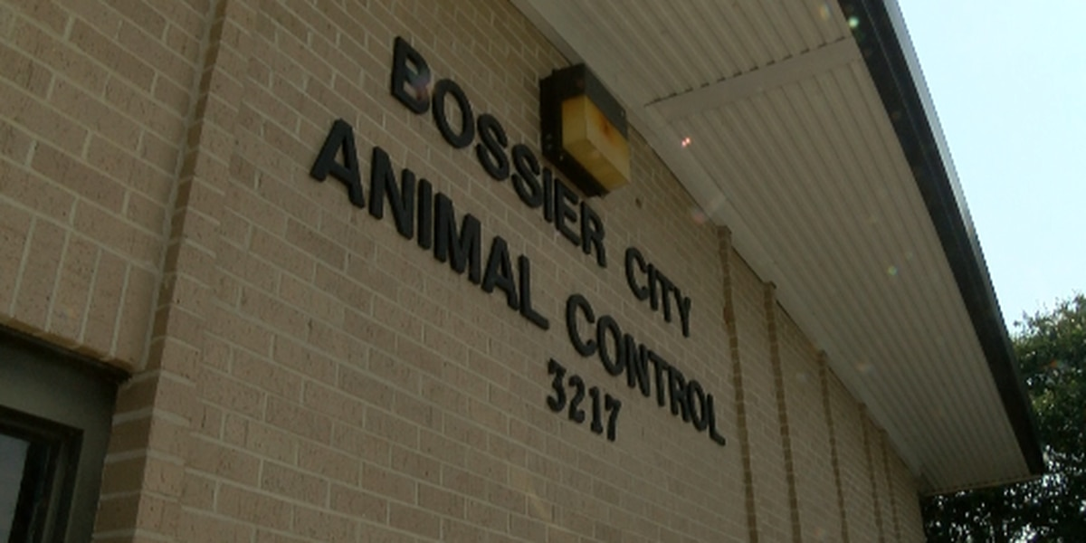 Bossier City Animal Control parting ways with volunteer group Friends of BCAC