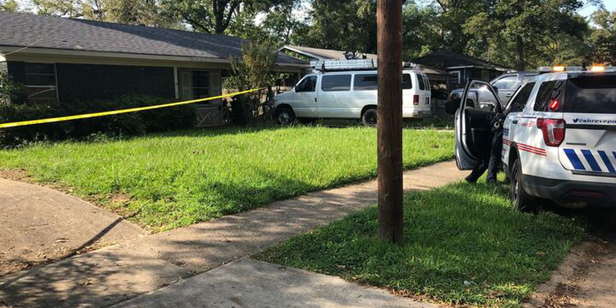 Police investigating report of shooting on Brandtway