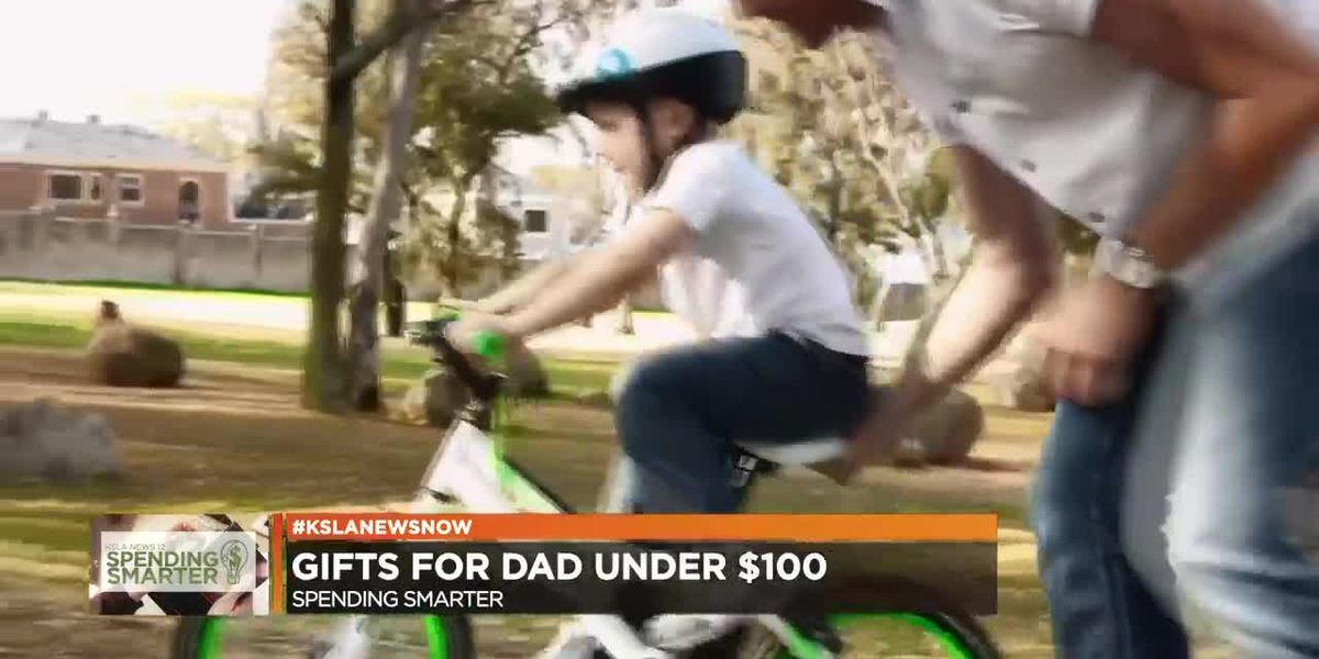 Father's Day gift ideas for less than $100