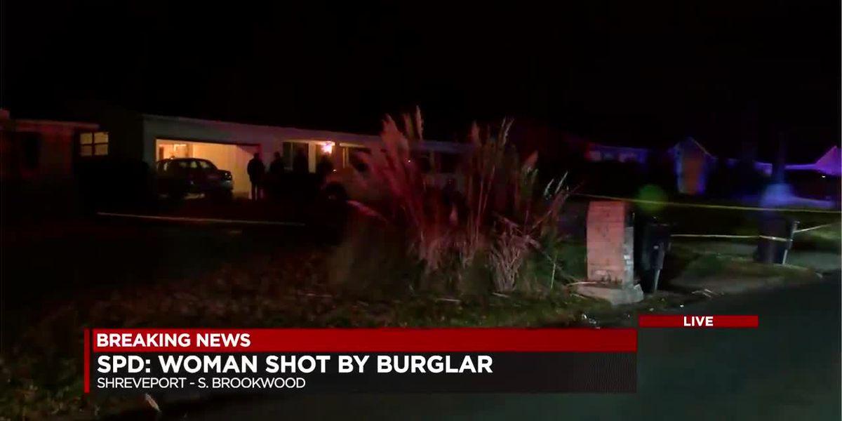 Woman shot during attempted home burglary