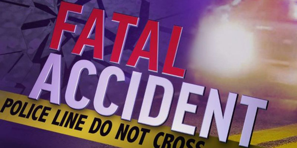 One person dies in wreck in Webster Parish