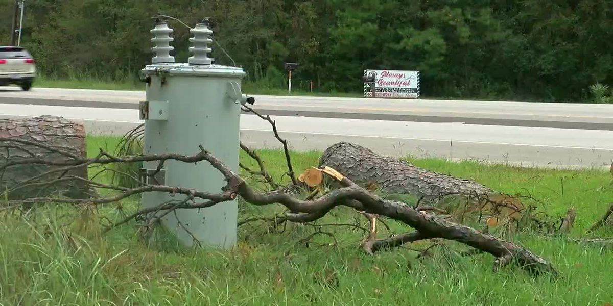 Officials in Deep East Texas discuss efforts to clean up storm debris from Hurricane Laura