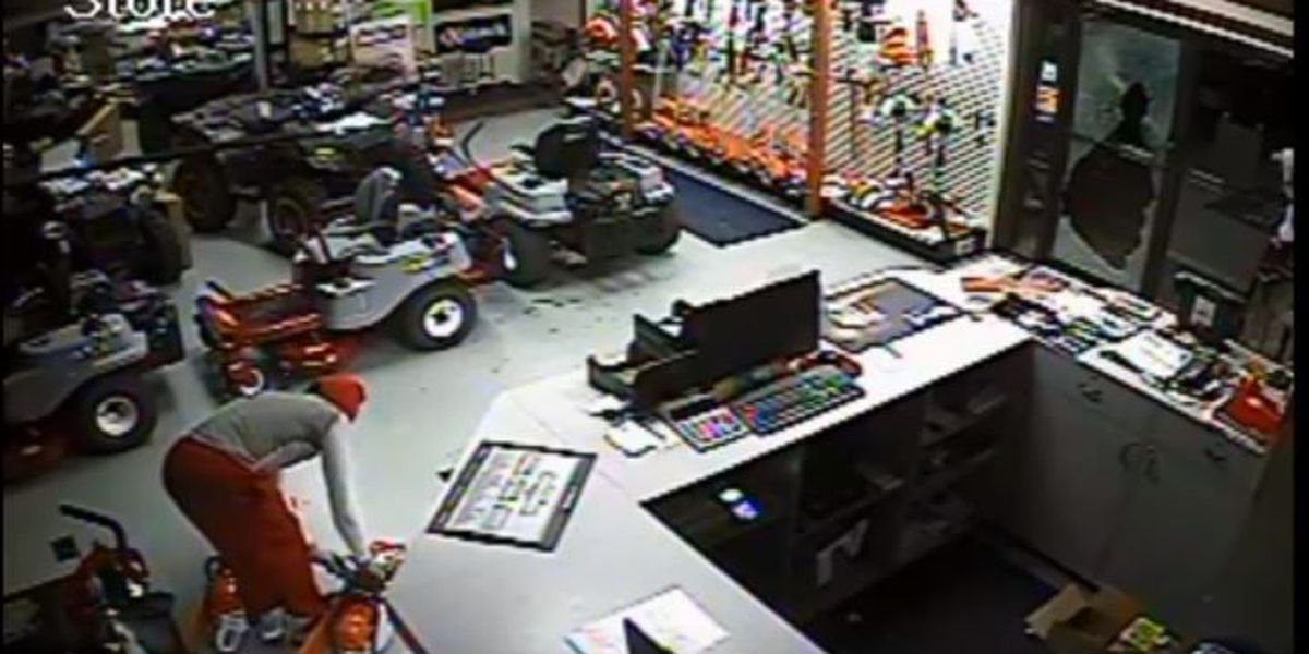 Surveillance video released of suspected chainsaw thief