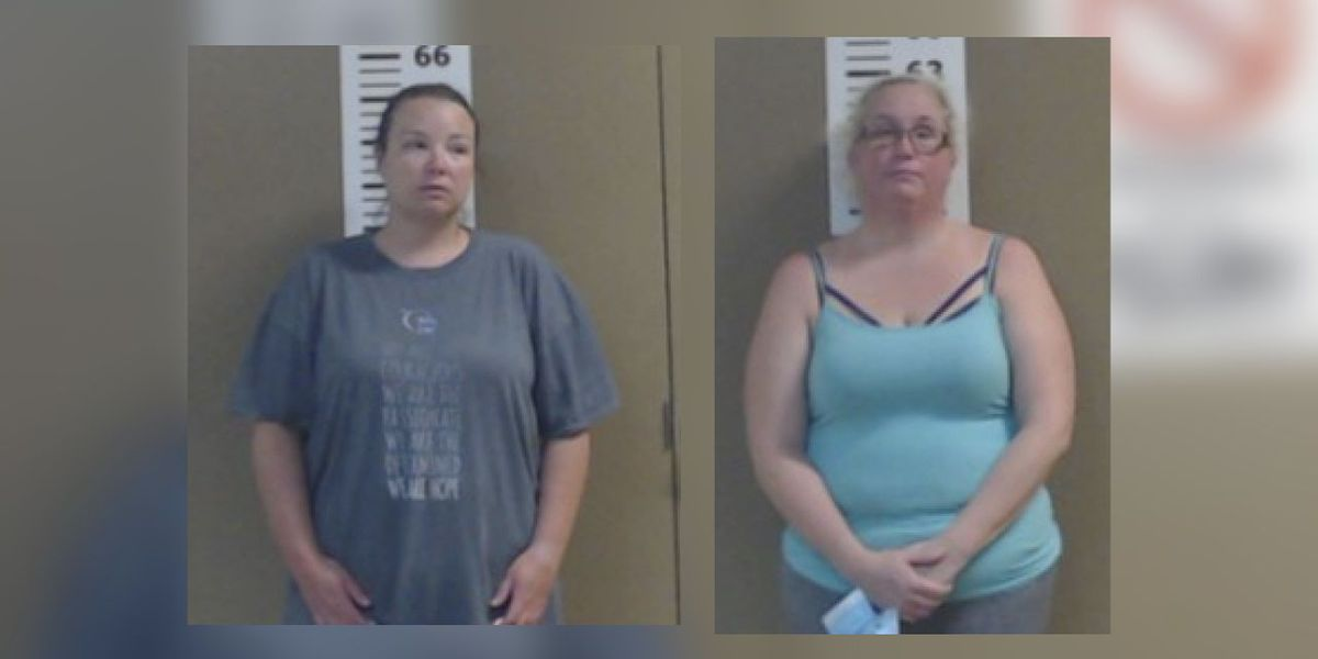 Panola County elections administrator, AgriLife secretary accused of stealing 4-H funds