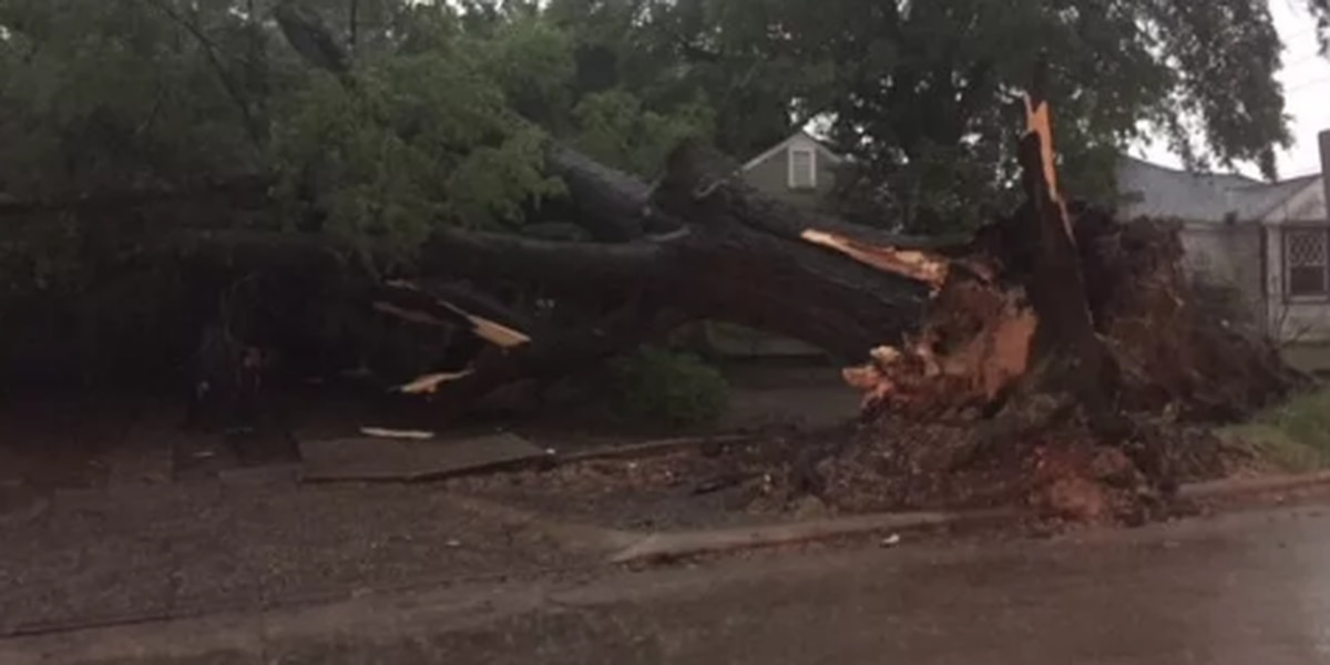 National Weather Service: EF-2 tornado passed near Coushatta