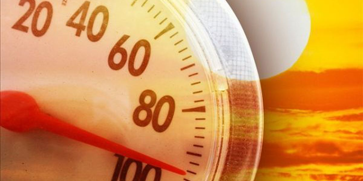 Beat the Heat: Tips for surviving hot weather