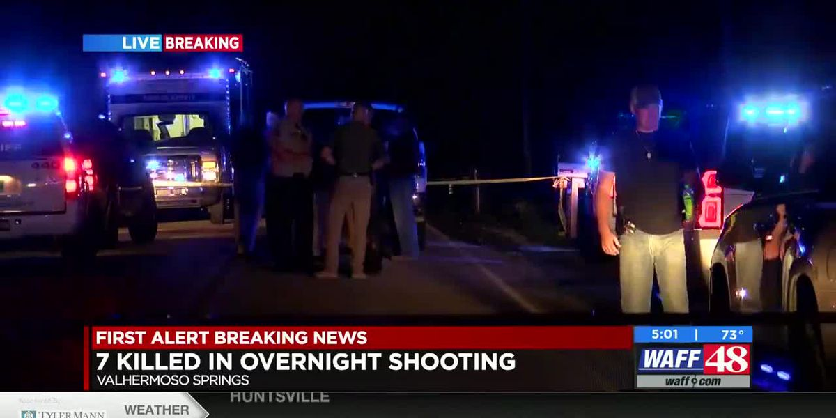 7 killed in overnight shooting