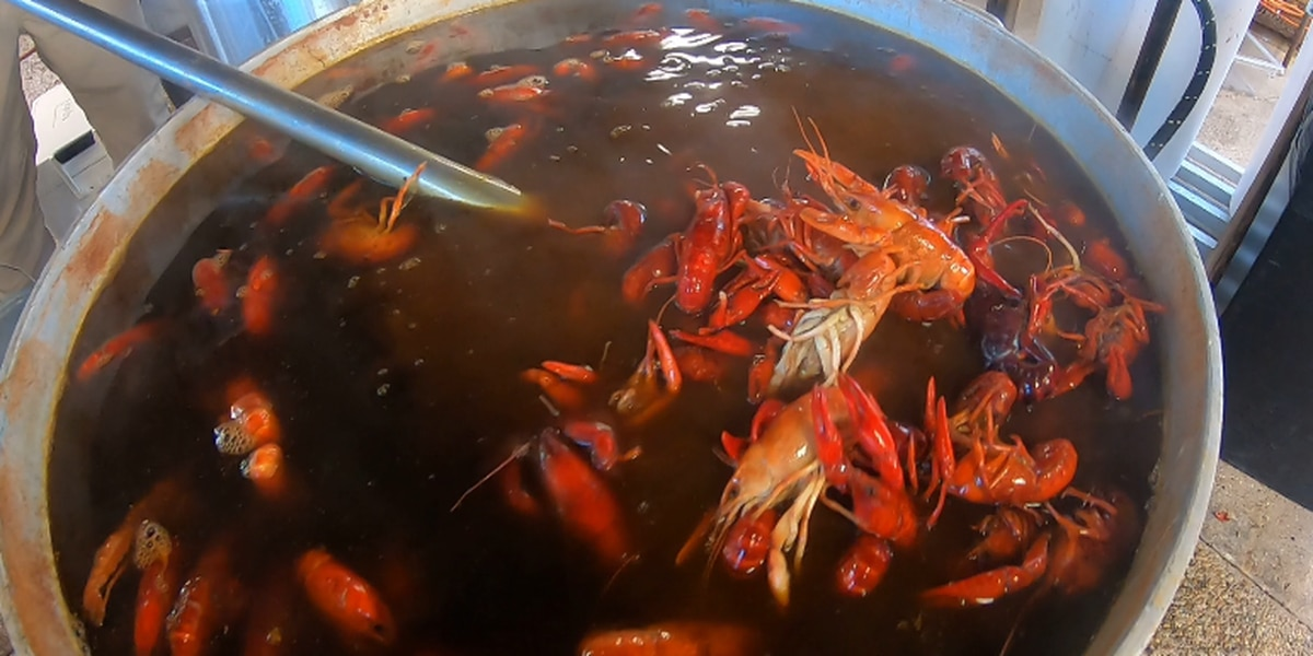 Crawfish are scarce, prices high this year in Louisiana