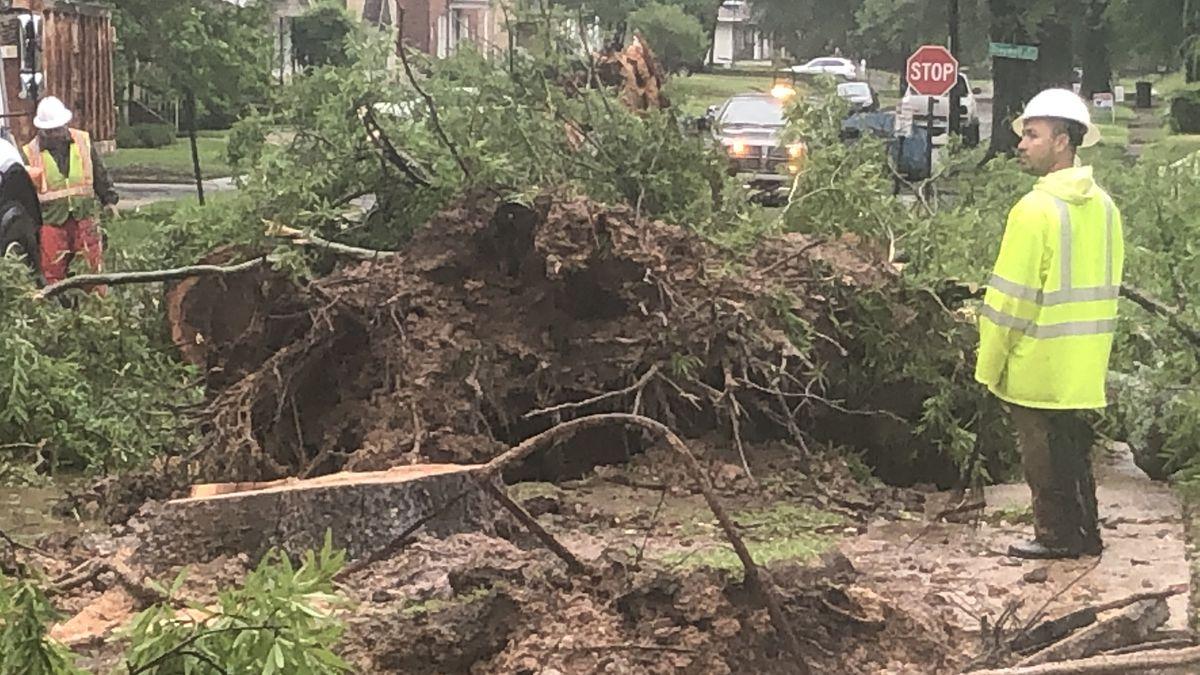 Overnight storm leaves trail of damage in Shreveport