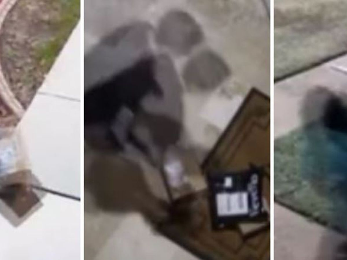 New law targets porch pirates in Texas