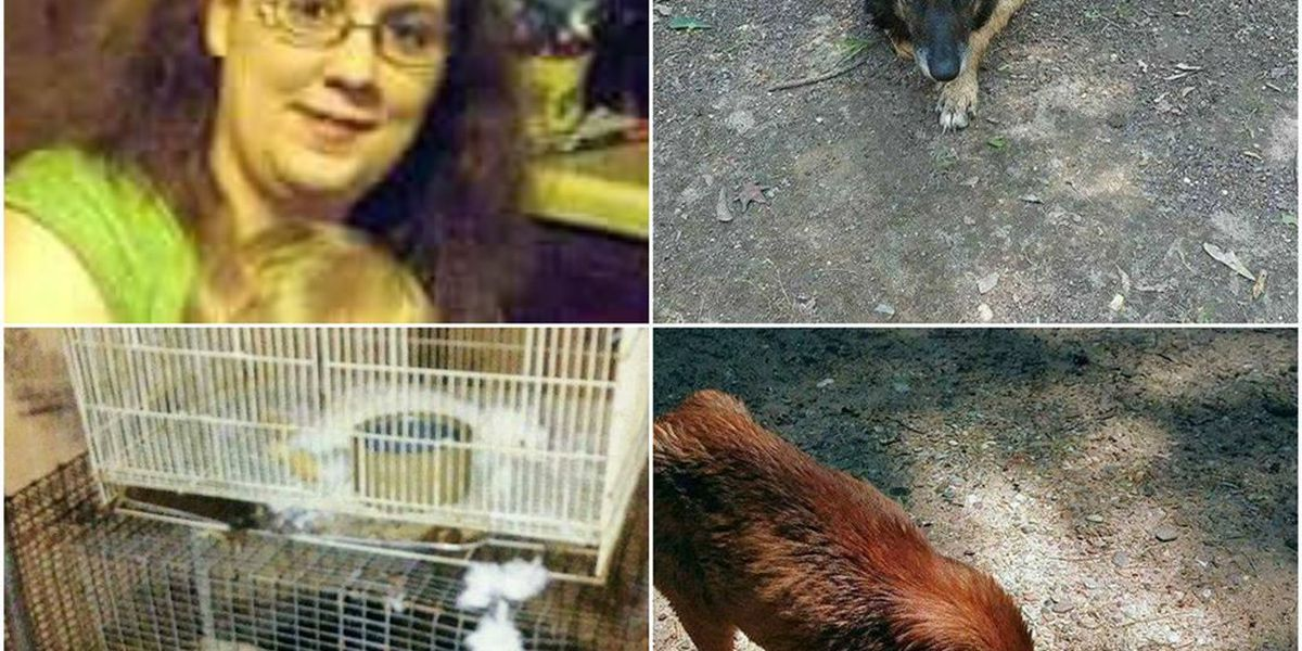 SWAR woman accused of abandoning animals facing multiple cruelty charges