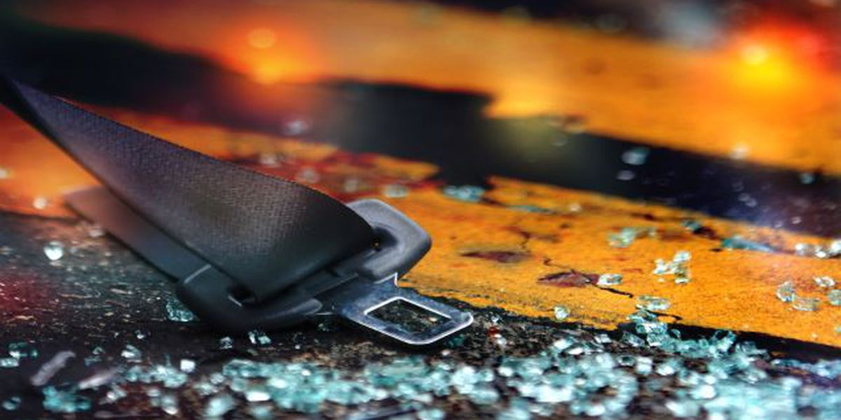 Webster Parish crash claims life of 5-year-old