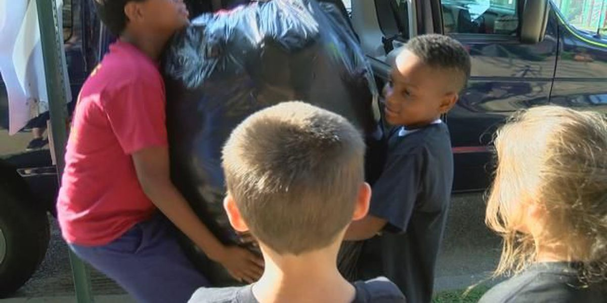 Martial arts students give stuffed animals to kids in need