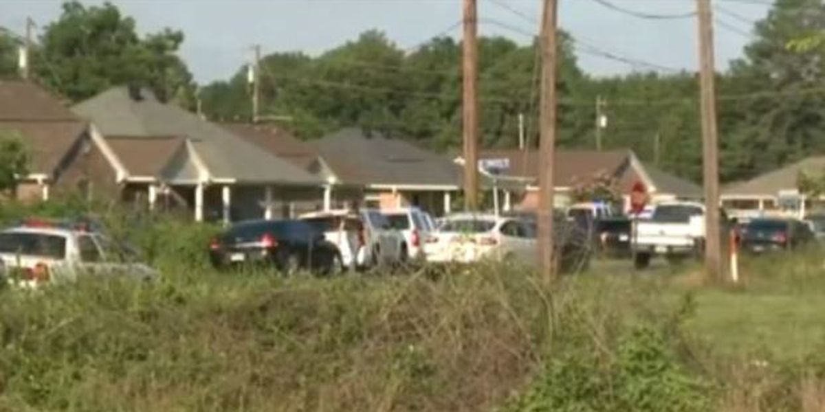 2 wounded Louisiana deputies in stable condition