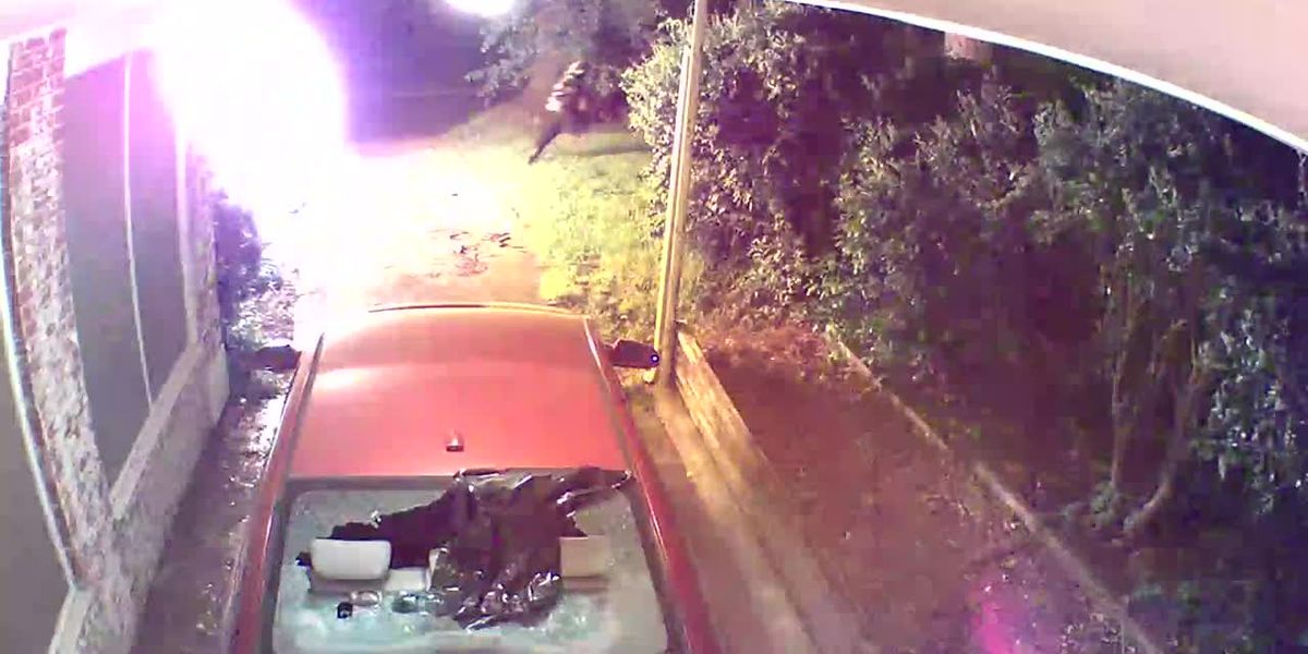 RAW: Arsonists caught on camera at Highland home