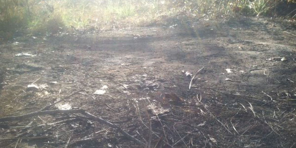 Scene where charred remains found scoured for clues