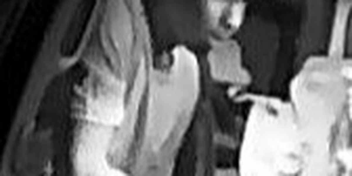 Police search for armed and dangerous burglar suspect
