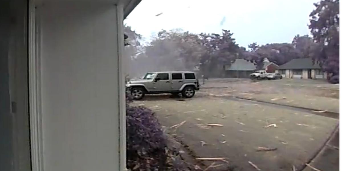 WILD VIDEO: Lightning strike narrowly misses La. woman as tree explodes feet away