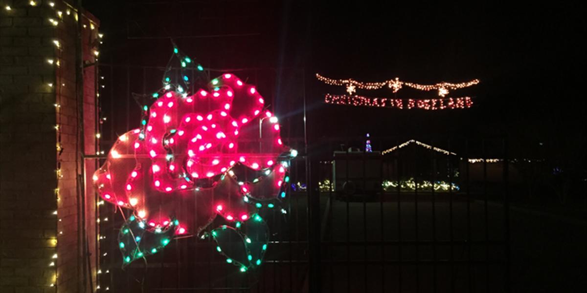 Shreveport rose garden transformed into Christmas trail of lights