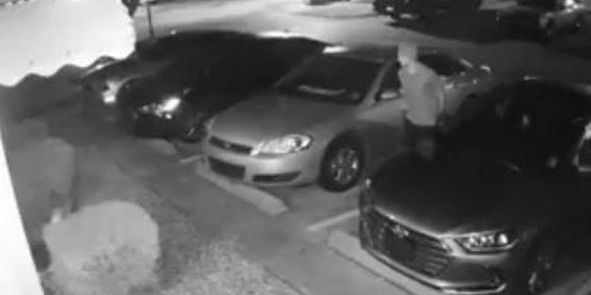 Crime Stoppers offers cash reward to identify burglar