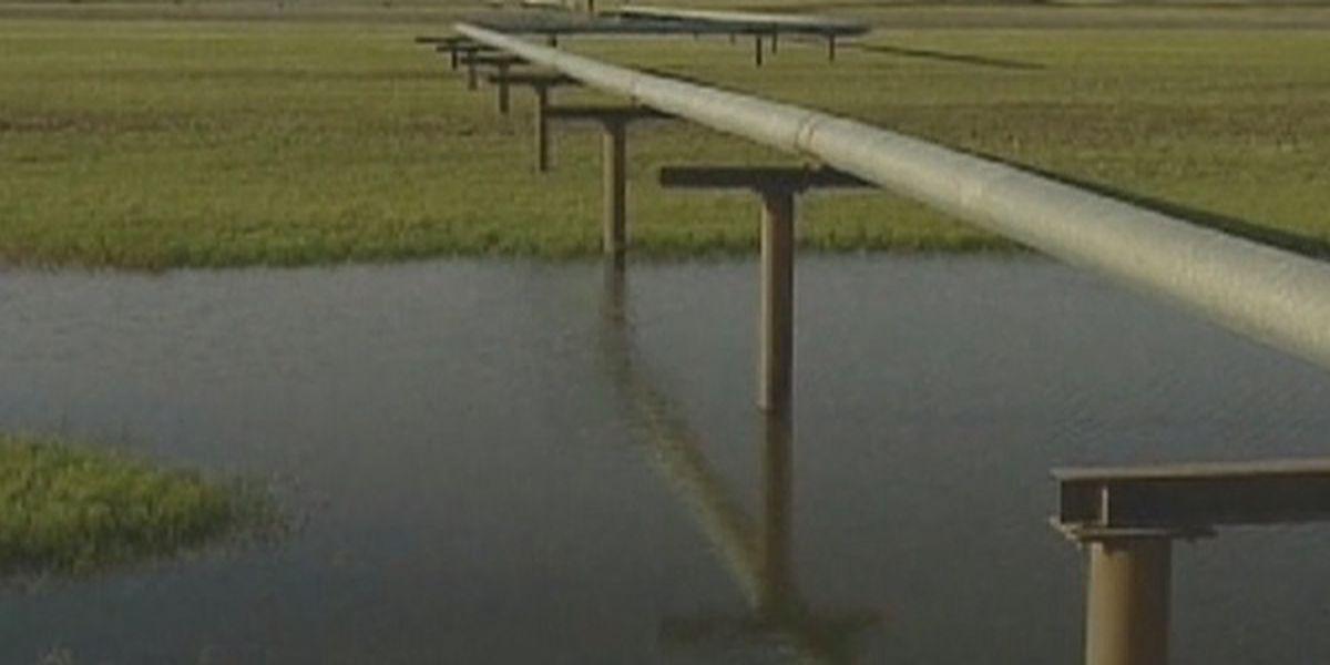 Louisiana AG sues Biden administration for Keystone XL pipeline cancellation