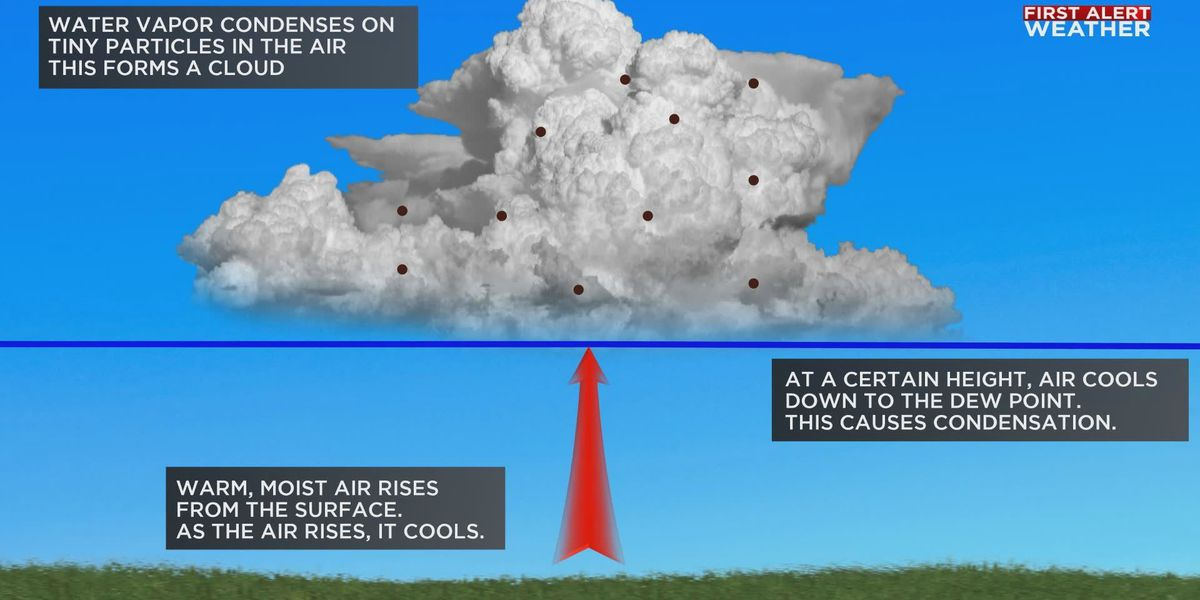 Weather or Not: How clouds form