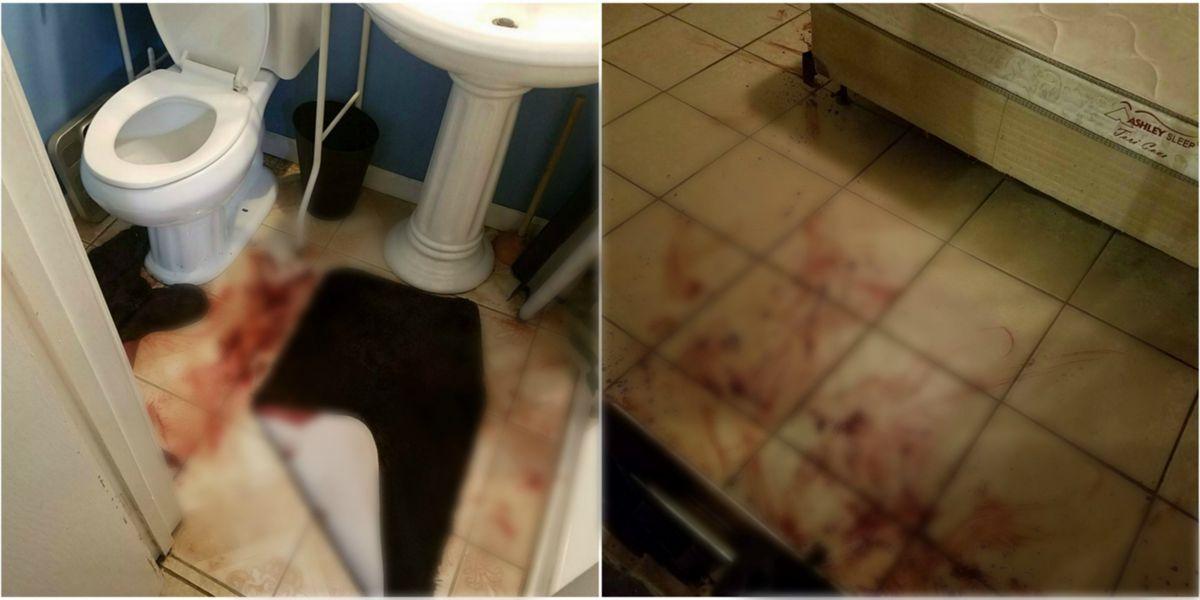 GRAPHIC: SPD seeks surveillance video after dogs shot in series of break ins