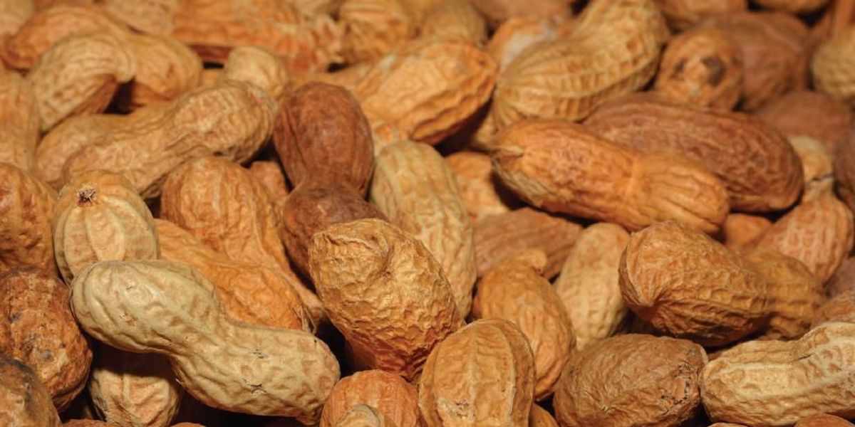 Are you allergic to peanuts?