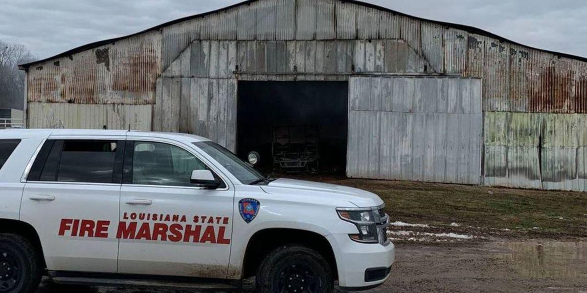7 horses die in south Bossier barn fire