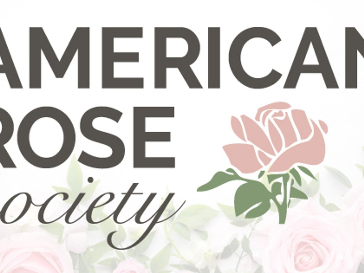 How you can make Valentine's Day everyday with the American Rose Society
