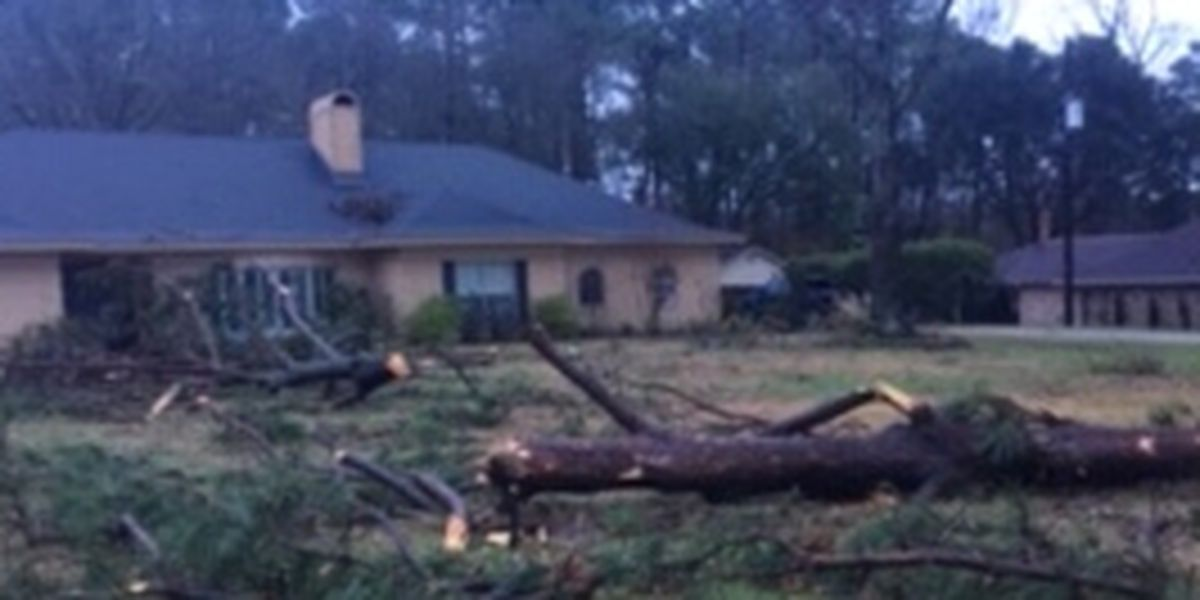 Center's Lakewood community experiences heavy damage from Friday night storms