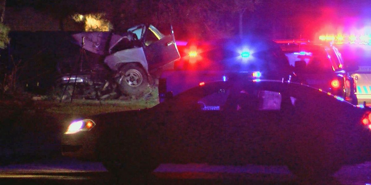 Man fleeing from deputy dies when truck slams into tree