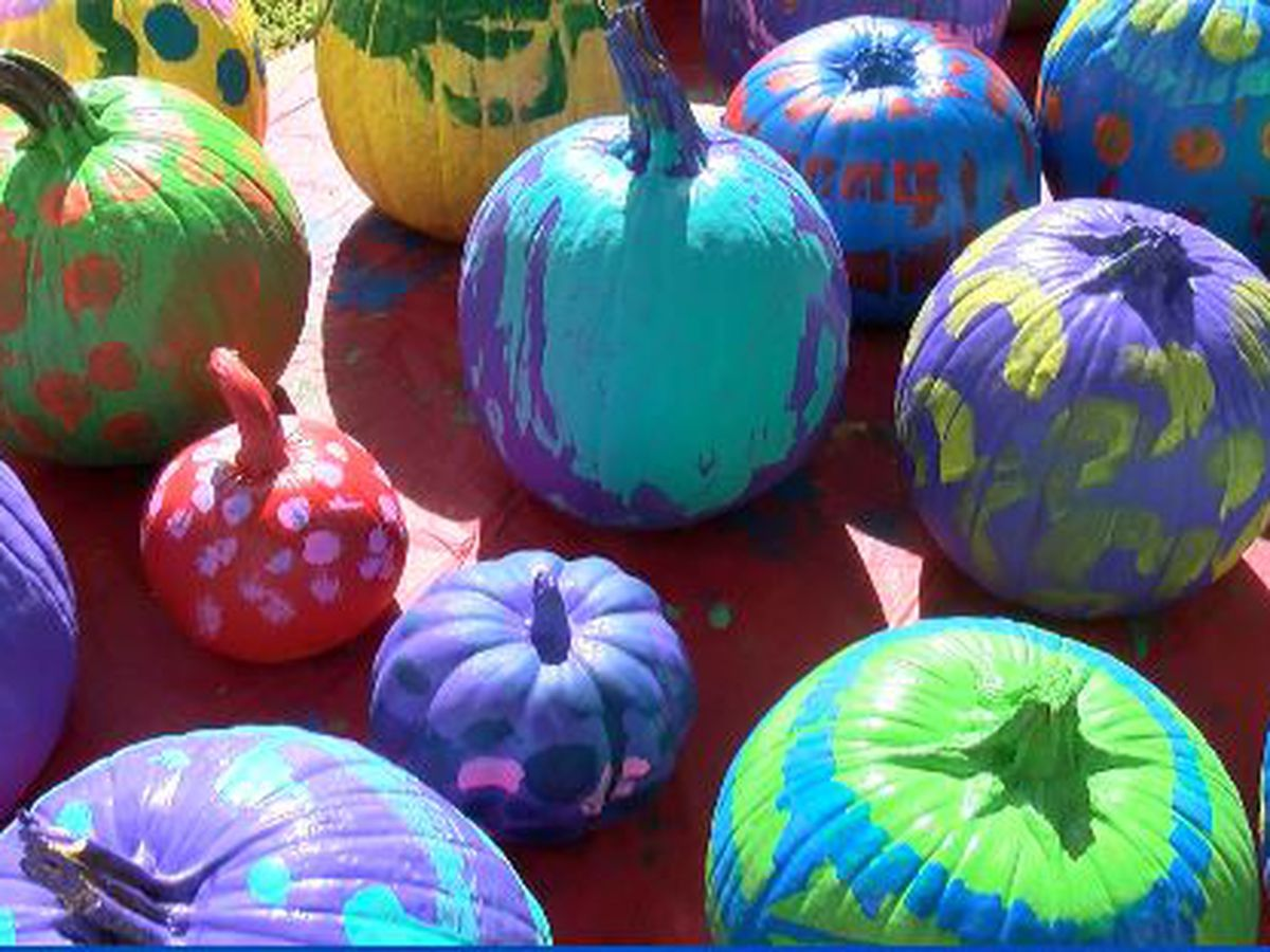 Pumpkin Shine on Line kicks off on Oct. 22