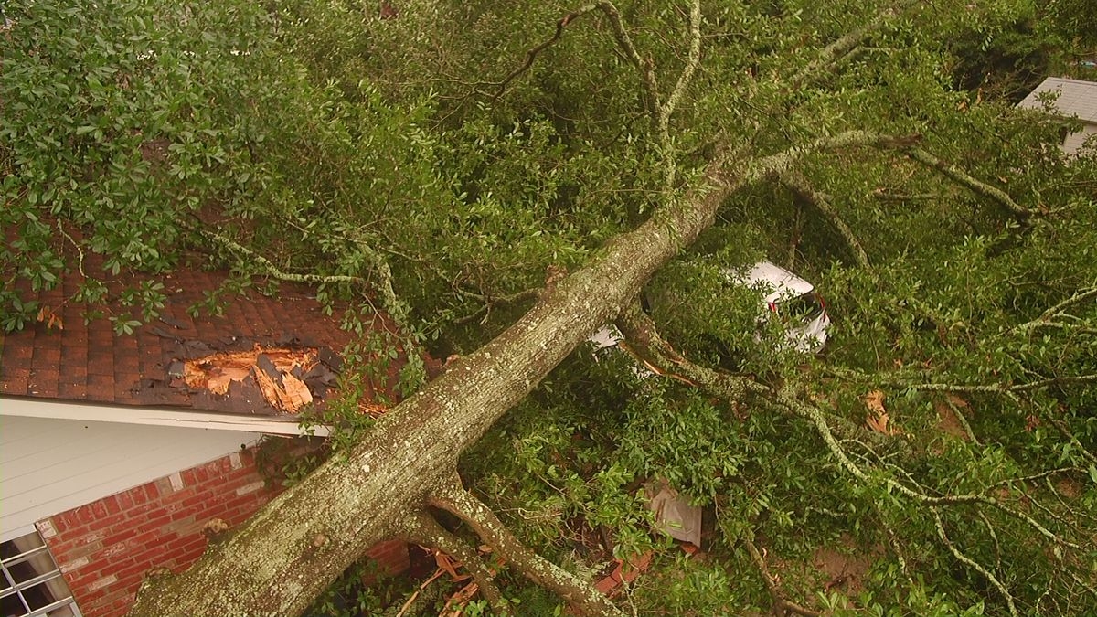 PHOTOS: Several areas hit hard by Wednesday storms; 3 tornadoes confirmed in La.