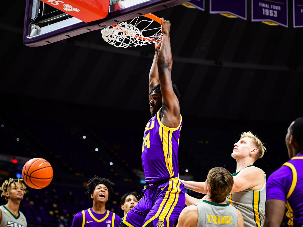 REPORT: LSU center Josh Gray has entered transfer portal