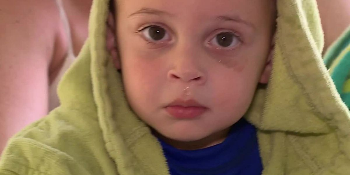 Florida toddler saves himself from drowning