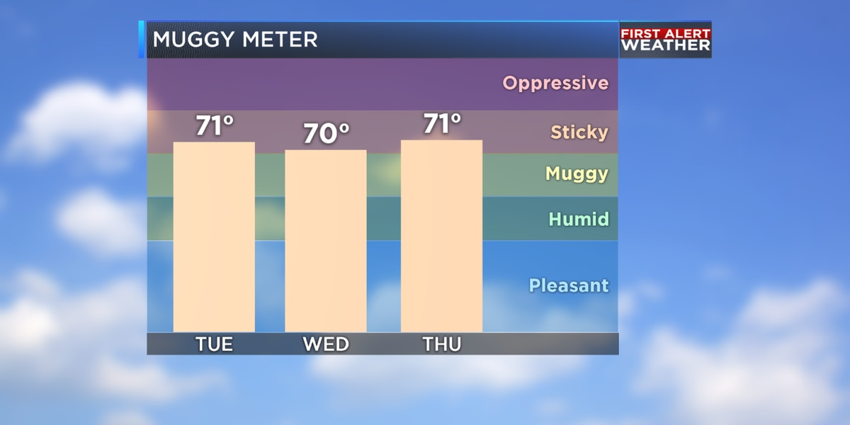 Weather or Not: Difference between Dew Point and Relative Humidity