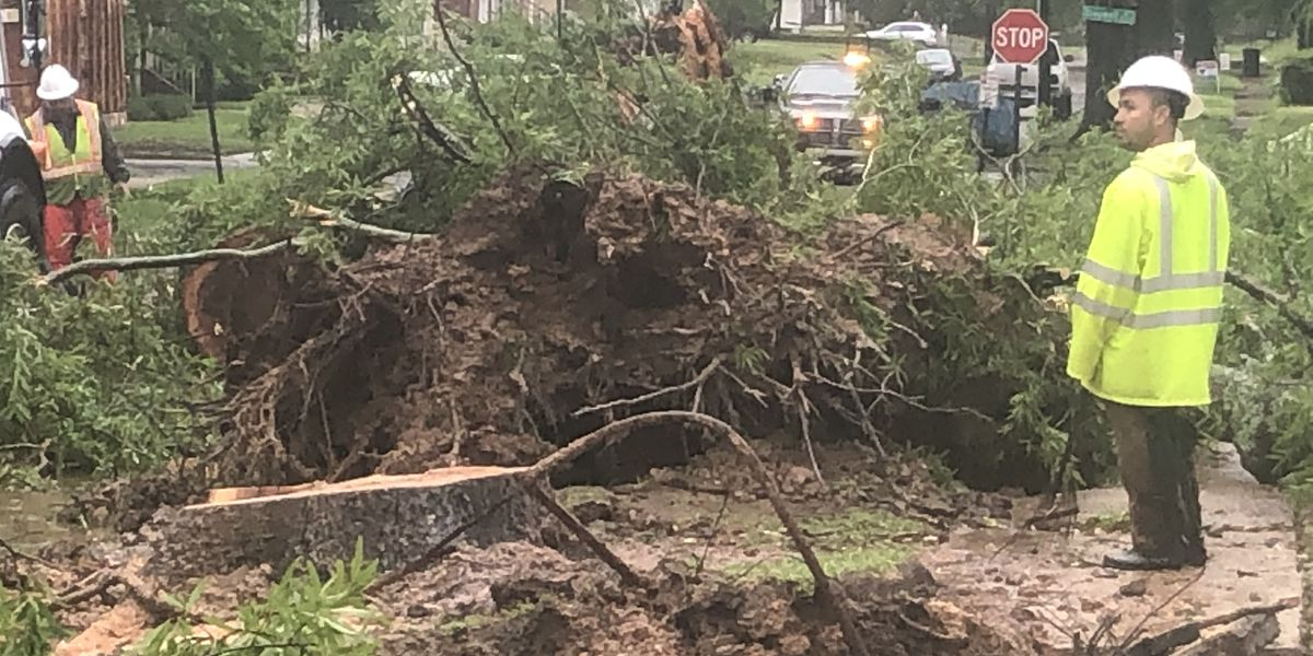 Overnight storm leaves trail of damage in Shreveport