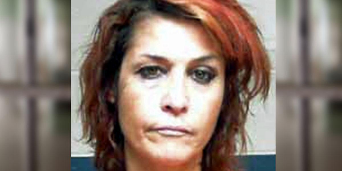 Goldonna burglary suspect surrenders to detectives