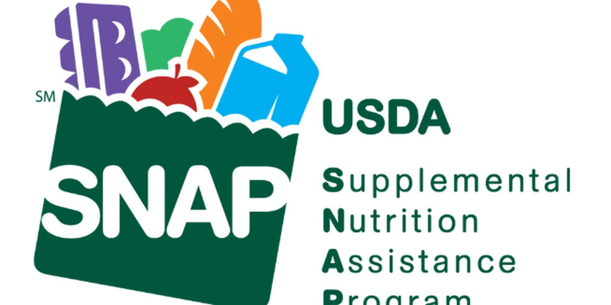 Texas HHSC to provide $254M in emergency food stamps for April as pandemic continues