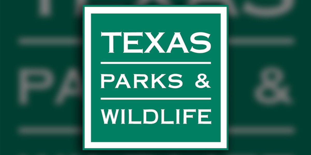 Texas Fishing Report