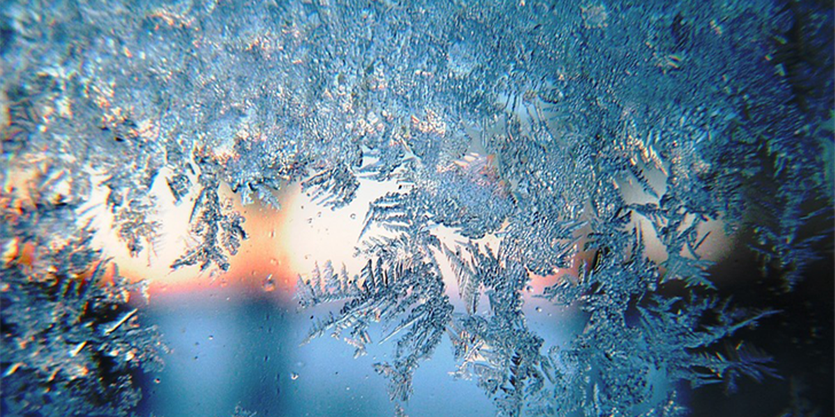 Frost, light freeze possible Thursday morning