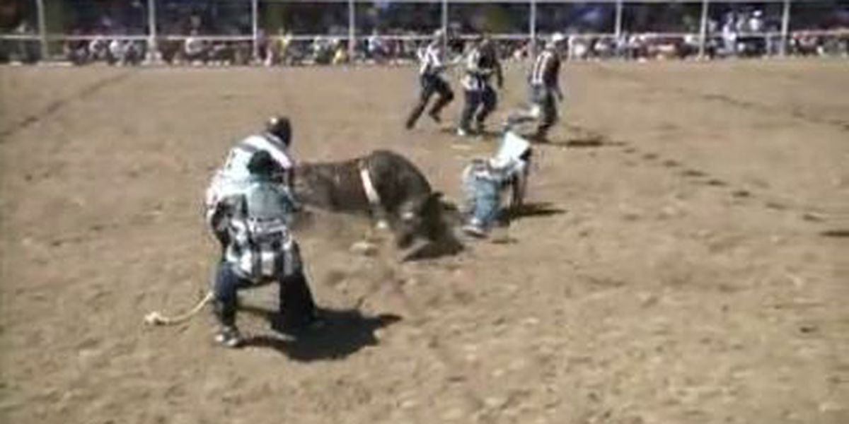 Annual Angola Prison Rodeo set for April