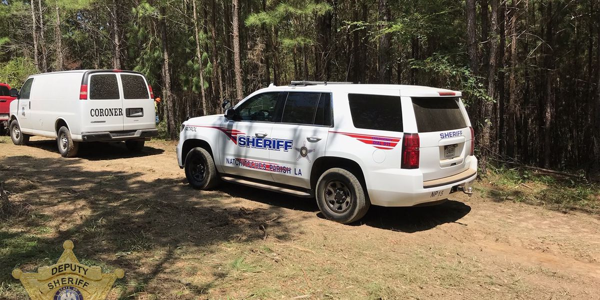 Loggers find human remains near where authorities searched for missing Natchitoches man earlier this year
