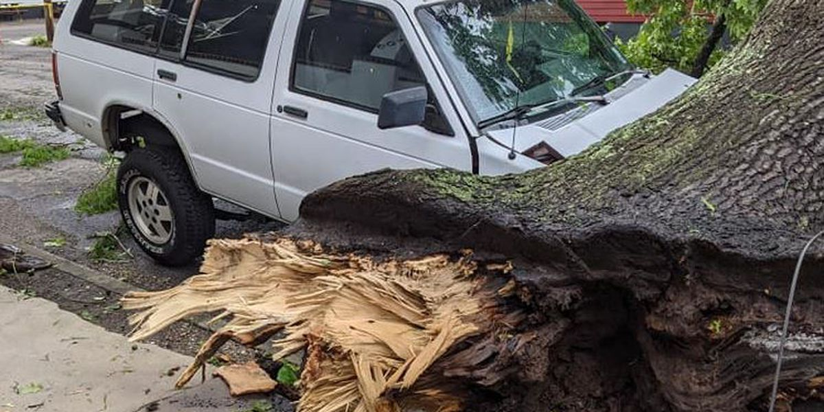 PHOTOS: EF0 tornado downs trees, damages cars, homes in New Orleans