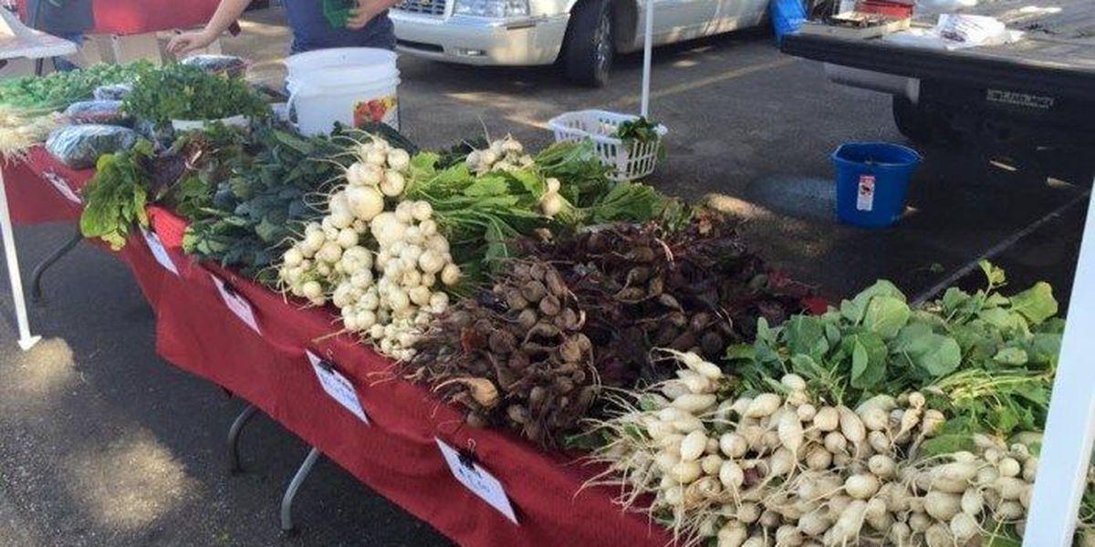 10 Best farmers' markets in Louisiana